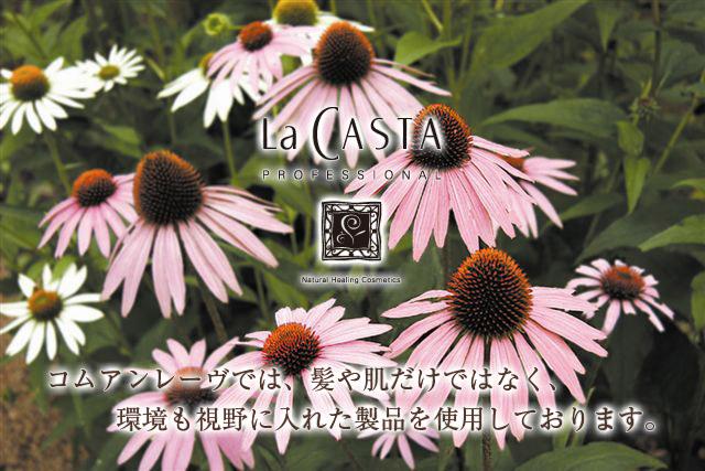 lacasta_top.jpg